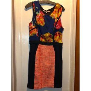 Rachel Roy Sleeveless Dress Multi-color size 12